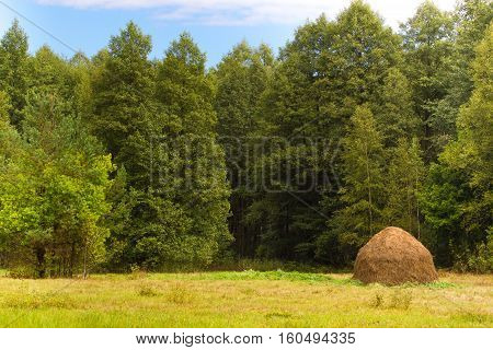 Haystack On Background Of Deciduous Forests And Fields  Grass. Beautiful Sustainable Landscape