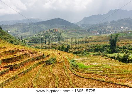 View Of Rice Terraces At Highlands Of Sa Pa District, Vietnam