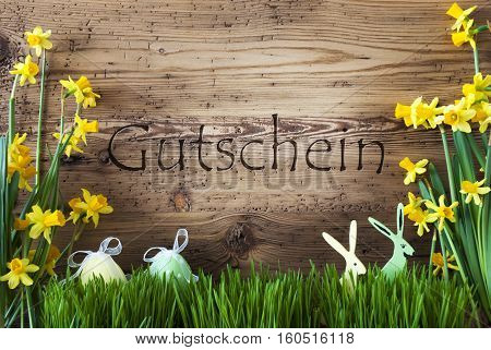 Wooden Background With German Text Gutschein Means Voucher. Easter Decoration Like Easter Eggs And Easter Bunny. Yellow Spring Flower Narcisssus With Gras. Card For Seasons Greetings