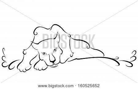 Lying sweetheart white Panther in the light background. EPS10 vector illustration