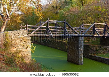 Footbridge in the park. Autumn color of tree leaves and bright green slime on a water.