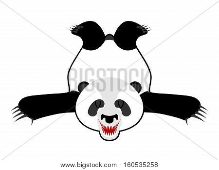 Bearskin Panda. Chinese Bear Skin. Hunter Trophy Isolated. Fur Carpet.