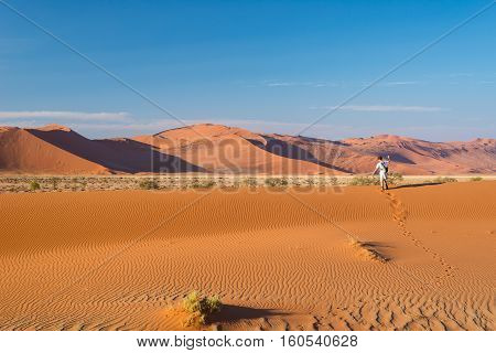 Tourist Walking On The Scenic Dunes Of Sossusvlei, Namib Desert, Namib Naukluft National Park, Namib