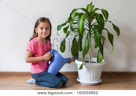 Cute Little Six-year Girl Child Watering From Watering Can In Her Hand Plant Palm Blue Watering Can Indoor. Care For Plants. Little Girl And Blue Watering Can.