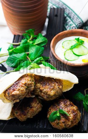Chicken Kafta Kebabs with pita and tzatziki.selective focus