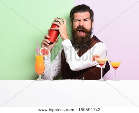 Funny Handsome Bearded Barman