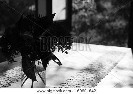 Ixora Flower In Vase On Wood Table Near Window , Black And White