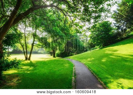 Spring green park. City park with pathway fresh lawn and trees in the morning. Springtime landscape background. Beauty in nature