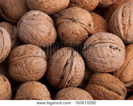 Walnuts dry ripe beautiful textured close up background