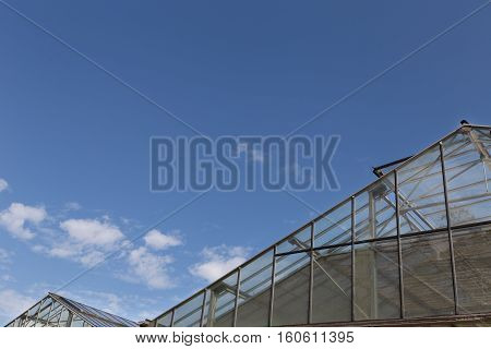 roof of glasshouse or greenhouse with clear blue sky in daytime - horticulture