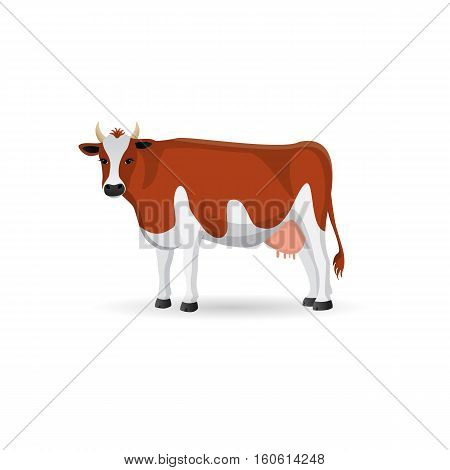 Red and white spotted cow isolated .Cute farm cattle domestic animal. Vector flat ilustration on a white background.