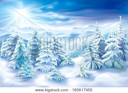 Winter landscape with covered snow fir trees