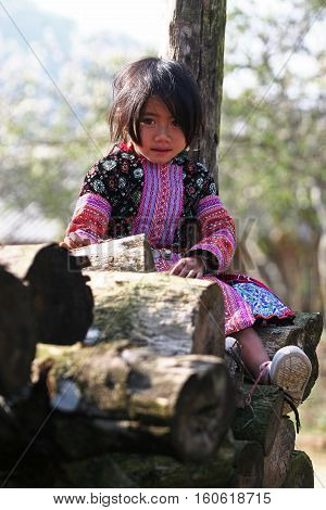 SON LA, VIETNAM - JAN 15: Undefined Hmong girl sitting on a heap of firewood when visitors coming to her house on January 15, 2010 in Moc Chau plateau, Son La province, Vietnam.