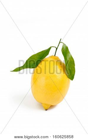 fresh raw lemon isolated on white backdrop