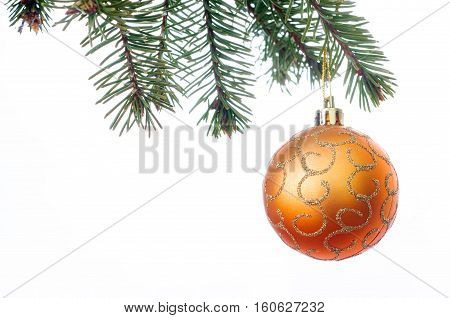 A orange Christmas bauble hanging from a branch of a Christmas tree isolated against white