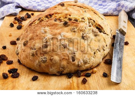 warm fresh home baked raisin bread on a wooden board with bread knife and kitchen towel in the background