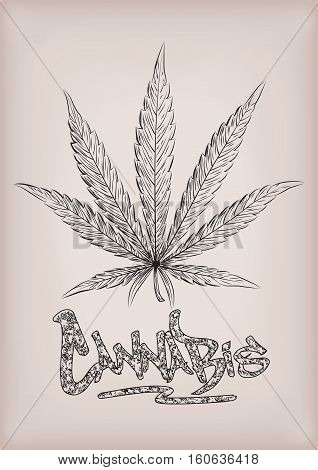 Cannabis marijuana weed leaf silhouette narcotic drug plant. Vector beautiful close-up top view sign signboard inscription graffiti black outline line art design drawn illustration beige background