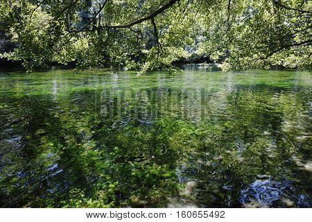 Emerald green flowing river water with seawead river Sourge Fontaine-de-Vaucluse Provence France