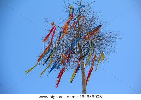 Maypole / decorated with colored ribbons .