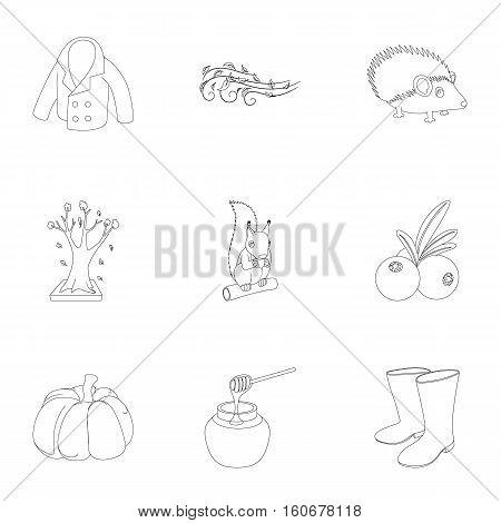 Falling leaves season icons set. Outline illustration of 9 falling leaves season vector icons for web