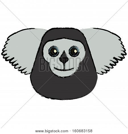 draw saki animal brazil vector illustration eps 10