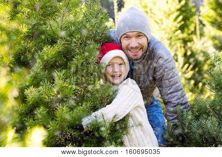 beautiful smiling boy in santa's hat sweater and mittens and his father choosing christmas tree at market or farm at winter holiday concept