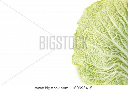 White natural background with savoy cabbage leaf