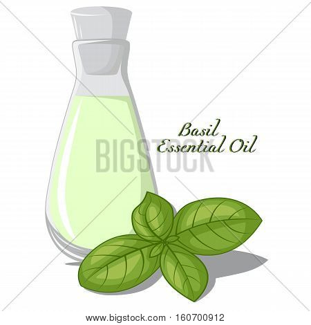 A small bottle of essential oil of basil