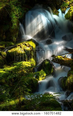 Clearwater Falls Douglas County Oregon Landscape Umpqua National Forest