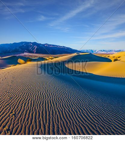 Small ripples of sand orange. Early morning.  Death Valley, Mesquite Flat Sand Dunes