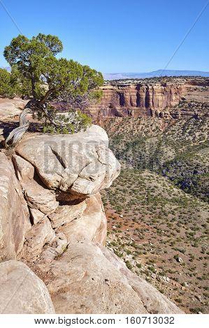 Cliff In The Colorado National Monument Canyon, Colorado, Usa