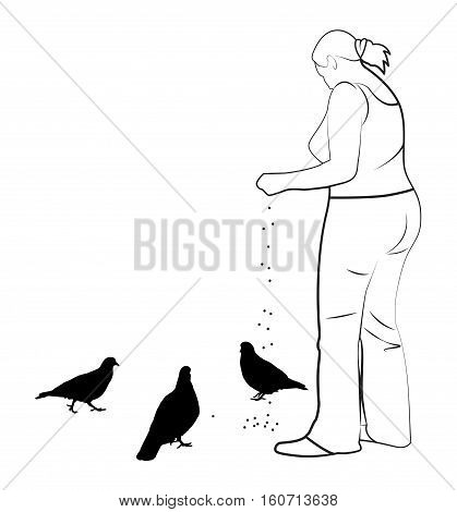 A girl feeds pigeons. Simple vector illustration