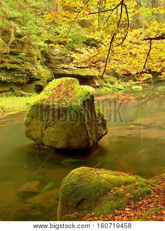 Colors Of Autumn Mountain River.  Mossy Boulder In Cold Water