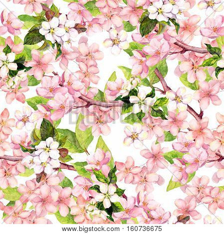 Cherry blossom, apple pink flowers. Floral repeated pattern. Watercolor