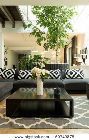 Room With Sofa, Plants And Skylight