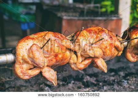 Free range chicken fire roasting traditional way on skewer at Thai old cafe background. Selective focus