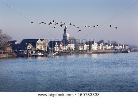 Village Lekkerkerk near the river Lek in the Netherlands. Some geese are flying over.