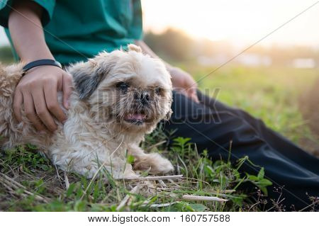 Old And Ugly Dog But Owner Girl Give Love And Very Happy.