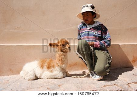Purmamarca Argentina - 28 January 2011: a young boy posing with a baby lama at Puramamarca on Argentina andes