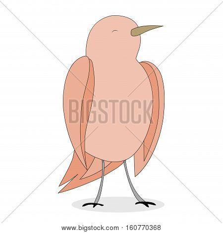 Nightingale bird vector. Cartoon animal mascot isolated illustration