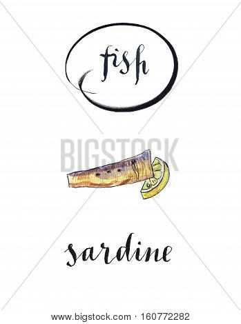 Piece of sardine and lemon hand drawn - watercolor Illustration