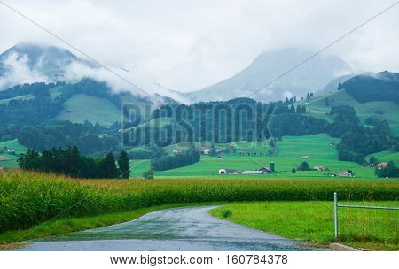 Road At Prealps Mountains In Gruyere In Fribourg Switzerland