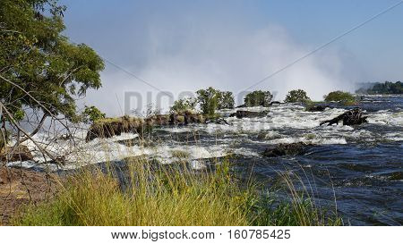 At the bank of the Zambezi River in Zambia, in the background the break-off edge and the spray of Victoria Falls