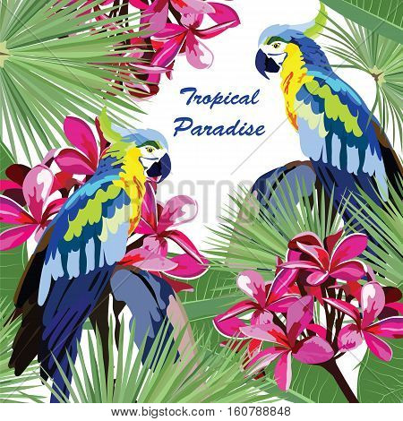 Exotic card with parrot birds and flowers. Vector Summer Tripocal Paradise background illustration