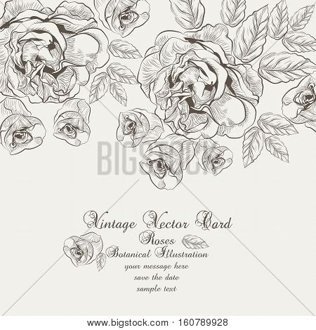 Floral Vector Vintage Invitation card. Black and white Garden Roses. Festive Postcard for weddings, ceremony, events. Hand drawn engraved technique
