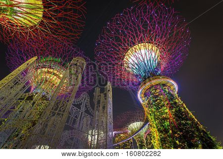 SINGAPORE - NOVEMBER 19 2016: Supertrees at Gardens by the Bay. The tree-like structures are fitted with environmental technologies that mimic the ecological function of trees light and sound show
