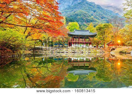 Baekyangsa Temple in autumn Naejangsan Park in korea.