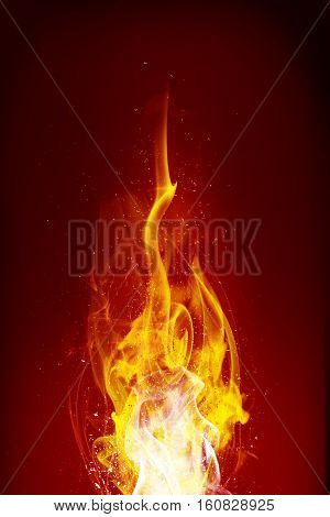 Fire flames bewitch on the black background