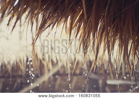 Tropical raindrops falling down from a reed roof.