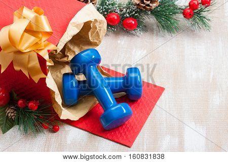 Christmas Gift Blue Sport Dumbbells